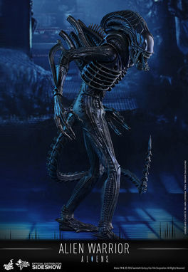 Aliens: Alien Warrior - Sixth scale Figure