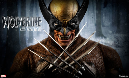 Marvel: Wolverine Sixth Scale Figure