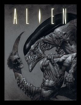 Alien (Head on Tail) Framed 30 x 40cm Print