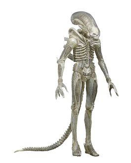 NECA Aliens Series 7 Concept 79' Action Figure