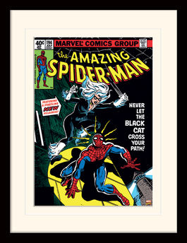 Spider-Man (Black Cat) Mounted & Framed 30 x 40cm Print